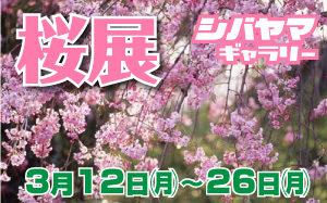 桜展2018